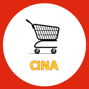 Corso ecommerce in Cina